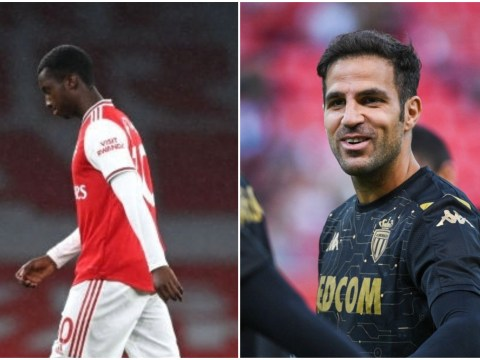 Cesc Fabregas leaps to Eddie Nketiah's defence after red card against Leicester
