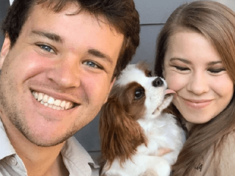 Bindi Irwin shares adorable family photo with husband Chandler Powell as they 'plan second wedding'