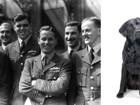 What was the Dambusters dog as headstone replaced to remove racist name?