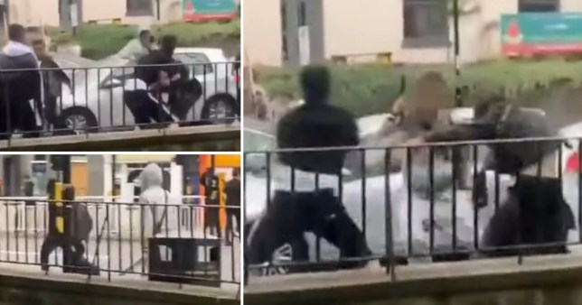 Composite image of screen grabs from video of fight