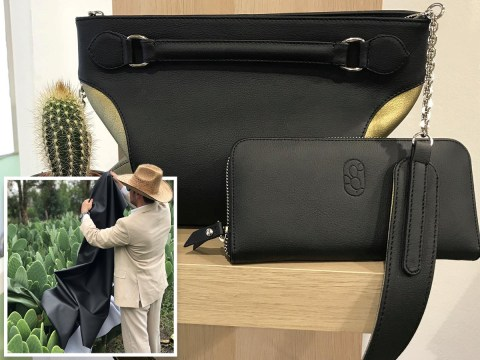 Eco-friendly leather made from cactus could be the next big thing in vegan fashion