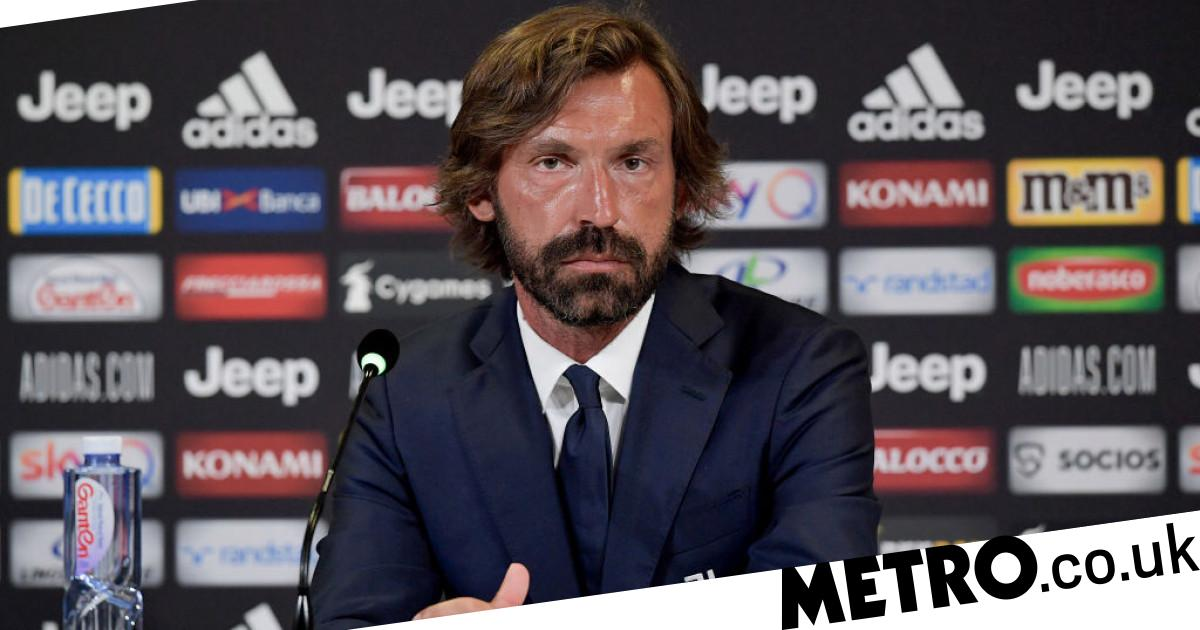 Man Utd star Paul Pogba would be 'ideal gift' for Andrea Pirlo at Juventus, says Luca Toni - Metro.co.uk