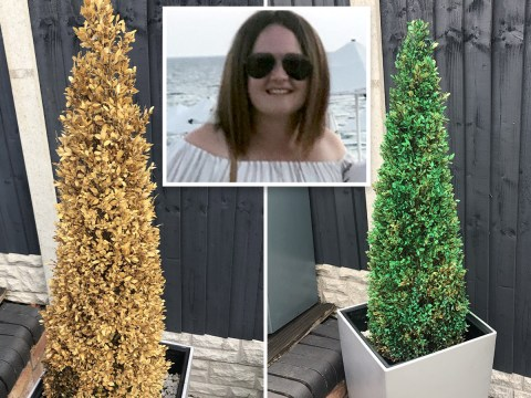 Mum shares 'hack' to make dead plants look alive again