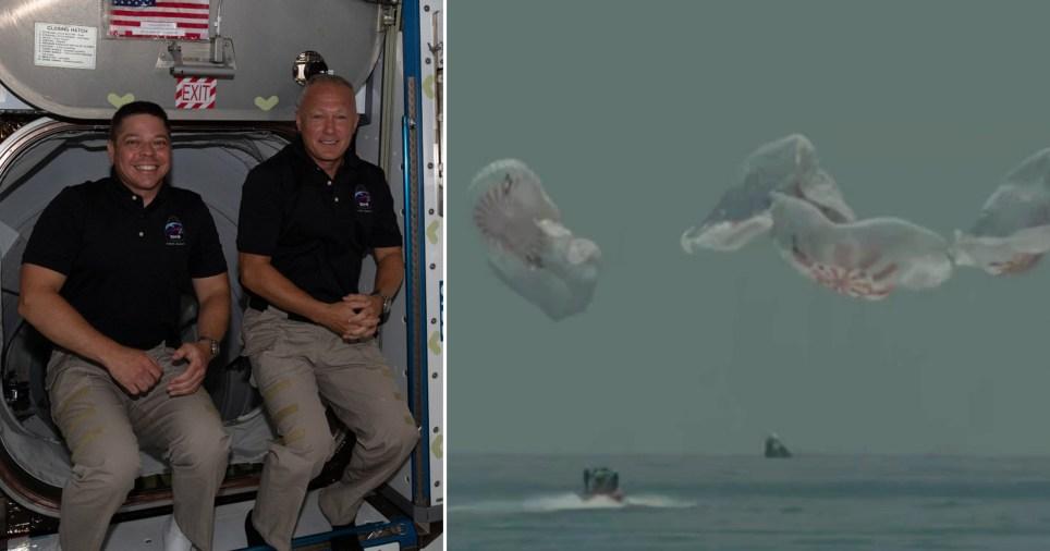 Les astronautes de SpaceX Crew Dragon reviennent sur Terre lors de leur premier `` splashdown '' depuis 45 ans