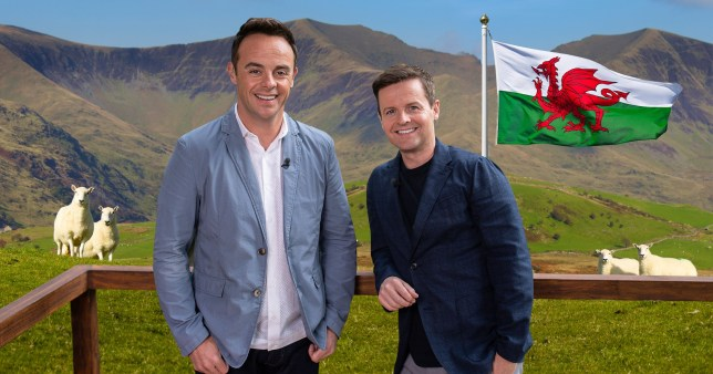 Ant and Dec Wales