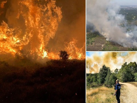 Dozens evacuated from their homes after huge wildfire in Surrey