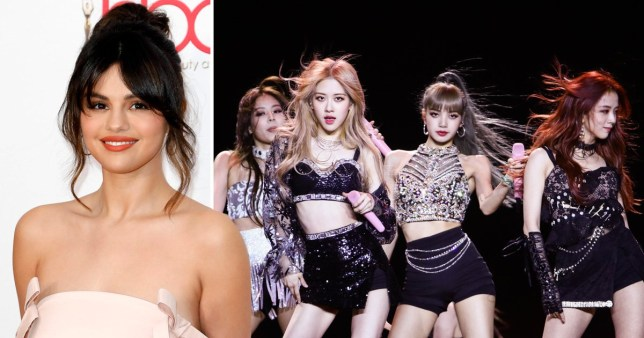 Selena Gomez and BLACKPINK announce title of their collaboration and it's a treat