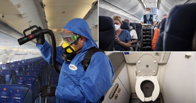 A health official disinfects a plane (left), a member of cabin crew walks down the aisle wearing a face mask and a view of an aeroplane toilet