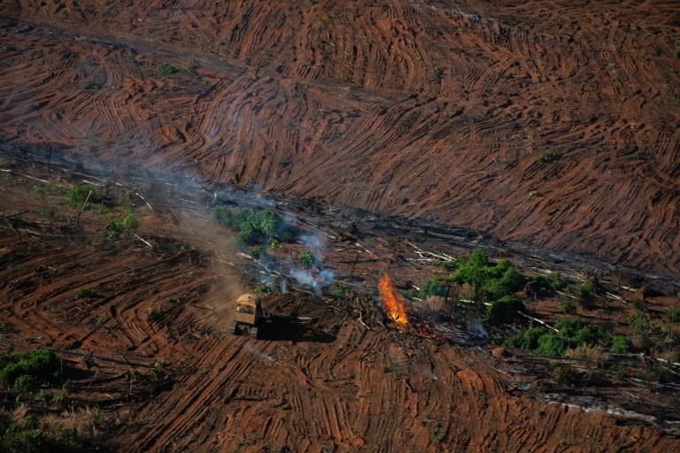 Des restes forestiers brûlent dans une zone enregistrée par le dernier Prodes (Projet brésilien de surveillance par satellite de l'Amazonie), à Juara, État du Mato Grosso.