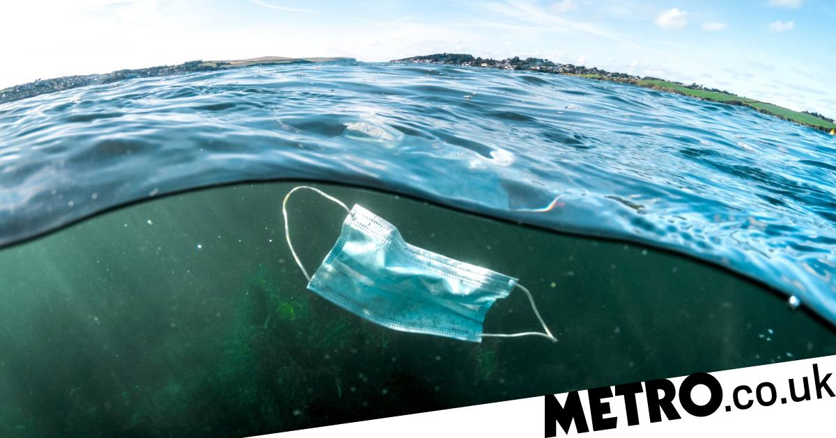 194,000,000,000 face masks spark fear of 'global plastic crisis' - Metro.co.uk