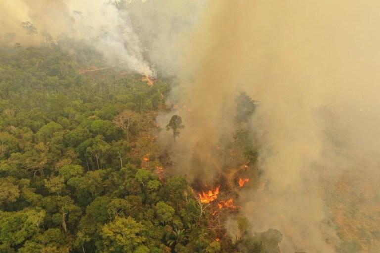 Des milliers de nouveaux incendies ont été détectés dans le bassin de la forêt amazonienne en 2019. Cette photo a été prise à Porto Velho, au nord-ouest du Brésil, en août 2019.