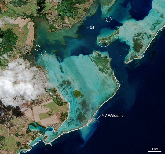 The MV Wakashio, visible at the bottom of the image, is seen stranded close to Pointe d'Esny, Mauritius in this image taken on August 11, 2020 by the Copernicus Sentinel-2 mission. The oil slick can be seen as a thin, black line surrounded by the bright turquoise colours of the Indian Ocean. Oil is visible near the boat, as well as other locations around the lagoon. European Space Agency/Handout via REUTERS. THIS IMAGE HAS BEEN SUPPLIED BY A THIRD PARTY. NO RESALES. NO ARCHIVES