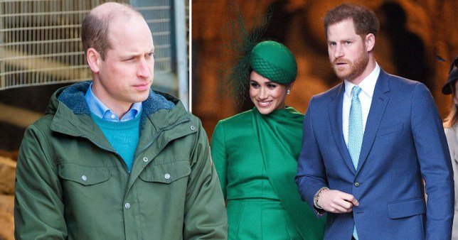 Harry and Will 'didn't speak for months' after the Sussexes announced plans to step back from royal life.