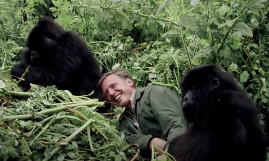 Sir David Attenborough: Early part of my career was the best time of my life