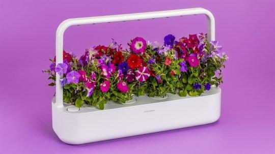 Comp: Gardening eletronics