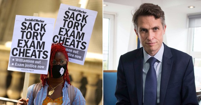 Unions don't want Gavin Williamson to be sacked because he is their 'useful idiot'