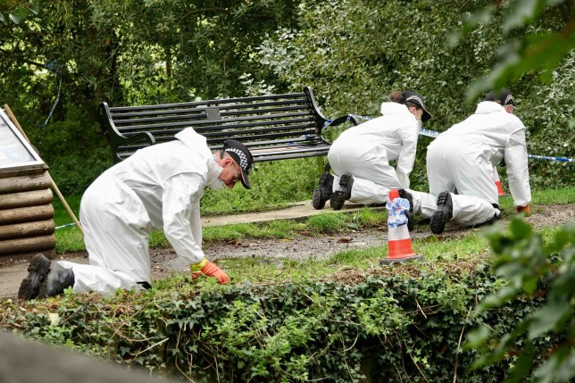 Sudbury murder: Boys pulled bin bags of human remains from River Stour