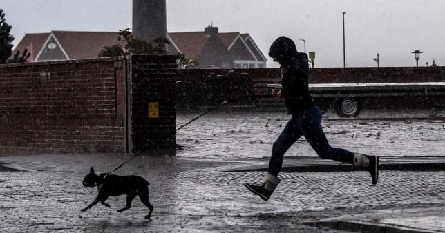 Woman walks her dog in the rain