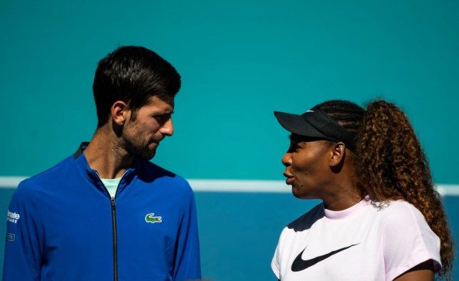 Novak Djokovic Holds Talks With Serena Williams Over Joining Players Association Metro News