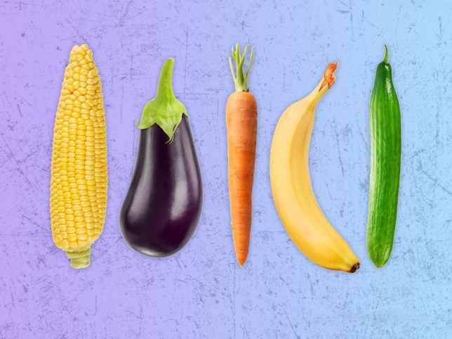 A corn on the cob, aubergine, carrot, banana and cucumber against a light blue background