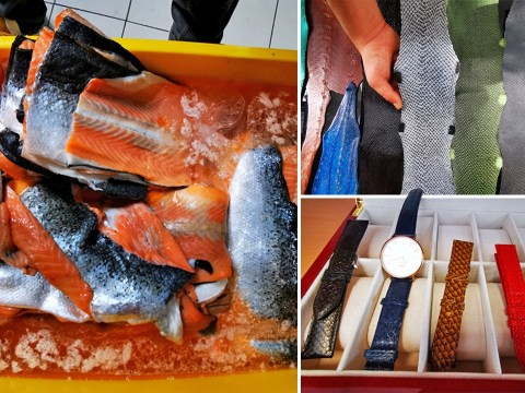 A French company is turning discarded salmon skin into leather