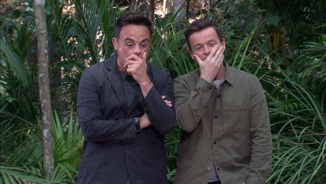 Editorial use only Mandatory Credit: Photo by ITV/REX/Shutterstock (10486414t) Bushtucker Trial, Deadly Dungeon - Anthony McPartlin and Declan Donnelly 'I'm a Celebrity... Get Me Out of Here!' TV Show, Series 19, Australia - 27 Nov 2019