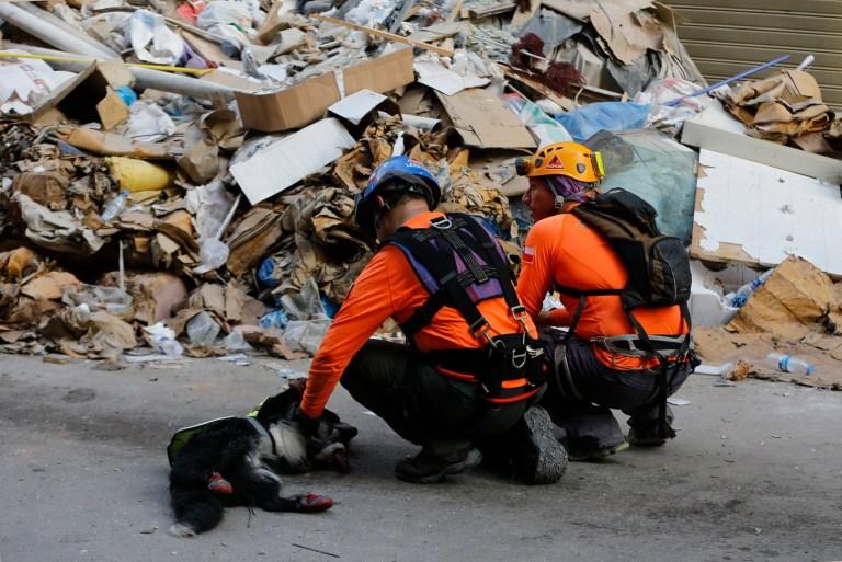 Les sauveteurs chiliens tapotent leur chien de sauvetage, après avoir fouillé dans les décombres d'un bâtiment qui s'est effondré lors de l'explosion massive du mois dernier, après avoir reçu des signaux indiquant qu'il pourrait y avoir un survivant sous les décombres, à Beyrouth, au Liban, le jeudi 3 septembre 2020.