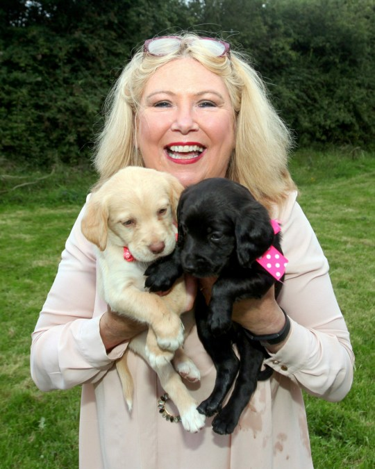 Mary Killing with two pups from her giant litter
