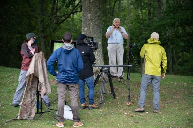 Sir David Attenborough filming