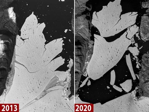 Huge ice sheet breaks off Greenland glacier amid rising temperatures