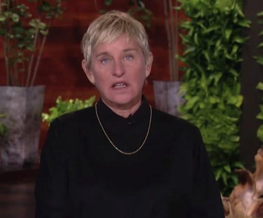 Ellen DeGeneres reveals dog's accident