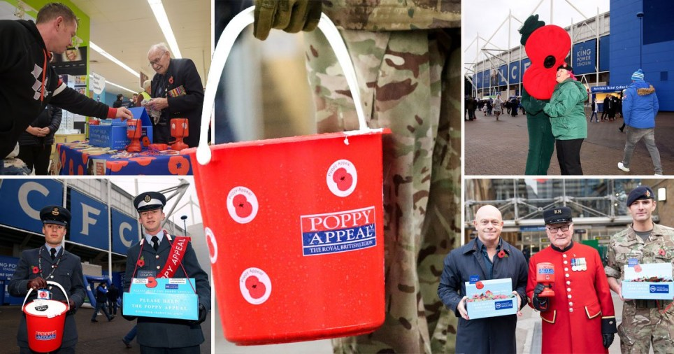 Poppy Appeal at risk as vulnerable sellers unable to fundraise due to coronavirus.