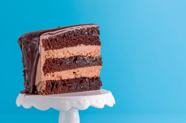 Close-Up Of Chocolate Cake Against Blue Background