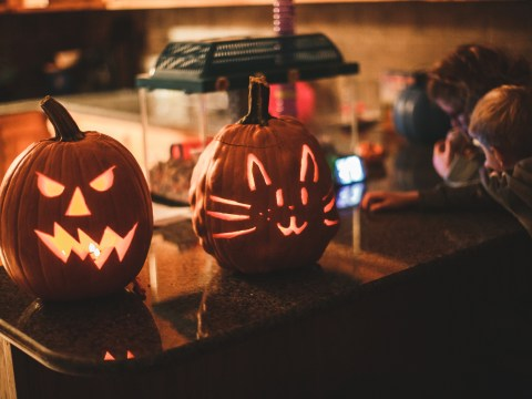 Four ways you can recycle your pumpkins when Halloween is over