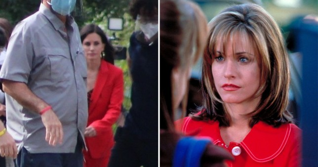 Courteney Cox as Gale Weathers