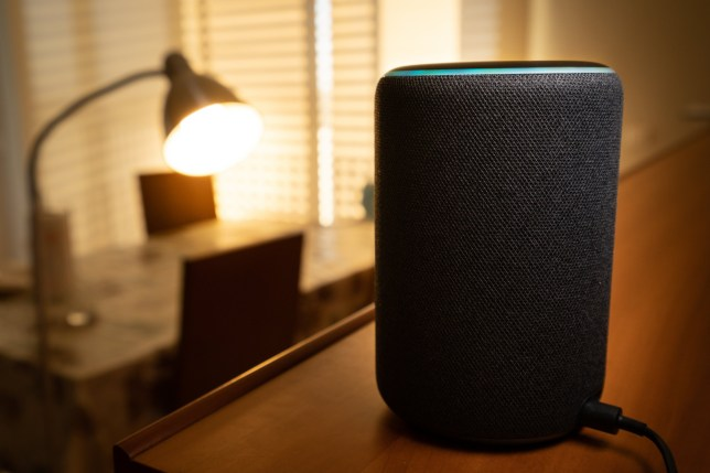 Amazon Prime Day is here to tempt you with new Alexa-enabled smart speakers (Credits: Shutterstock / Ivan Marc)