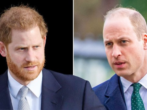 The Crown's royal advisor suggests 'division will remain' between Prince William and Harry