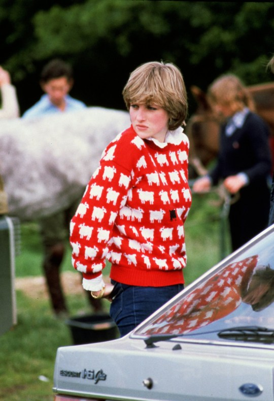 Diana, Princess of Wales wearing 'Black sheep' wool jumper by Warm and Wonderful (Muir & Osborne) to Windsor Polo, 1980
