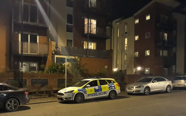 A police car on Thursday, October 15, on Portswood Road, Southampton, Hants outside the flats where the incident took place. A police officer has been stabbed multiple times and left with serious injuries.