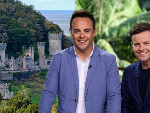 How I'm A Celebrity saved Gwrych Castle and hundreds of jobs with vital £300k lifeline