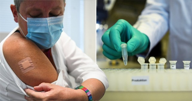 The Pfizer-backed vaccine being developed by German firm Biontech could be ready for distribution in the coming weeks