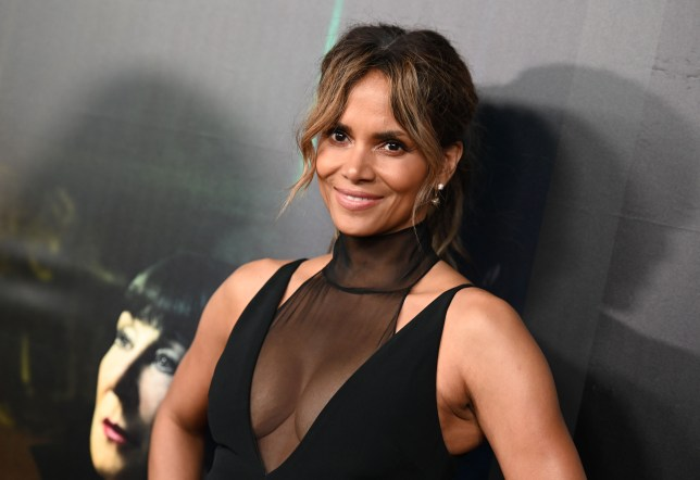 Halle Berry claps back after LisaRaye McCoy claims she's bad in bed | Metro  News