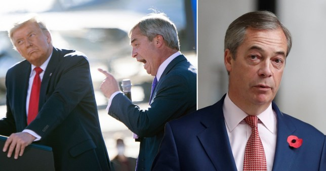Nigel Farage says Trump would have 'gained by nation mile' with out postal votes