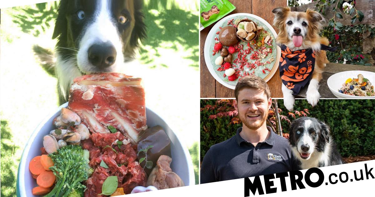 Australian chef whips up Michelin-style meals for his dogs