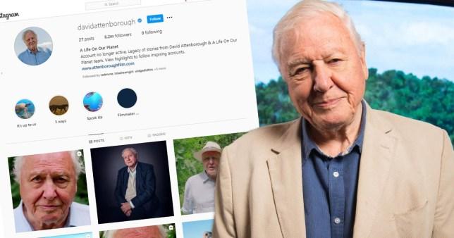 David Attenborough pictured alongside screenshot of Instagram page