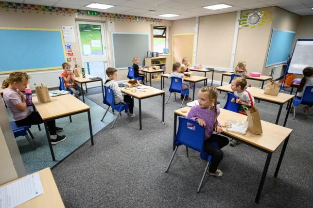 Children eating lunch at their desks