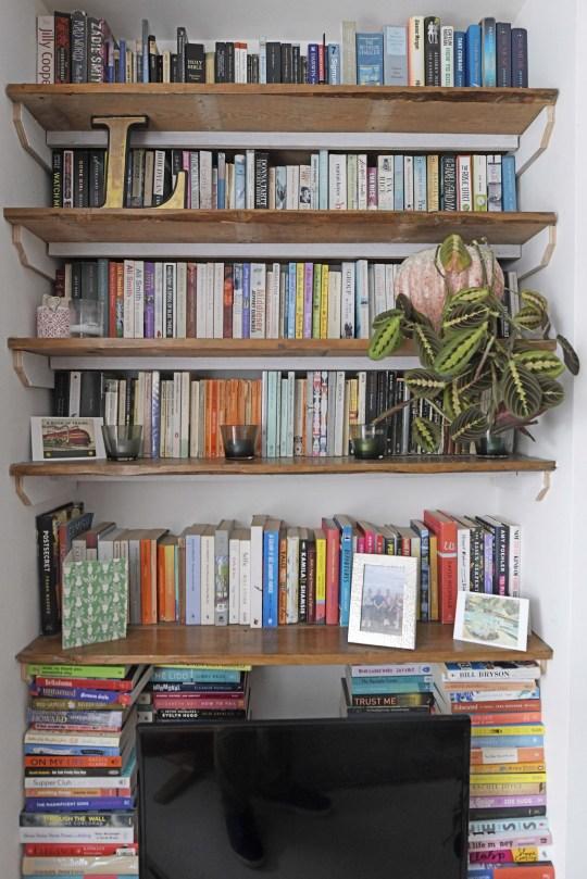 lauren bravo bookshelves