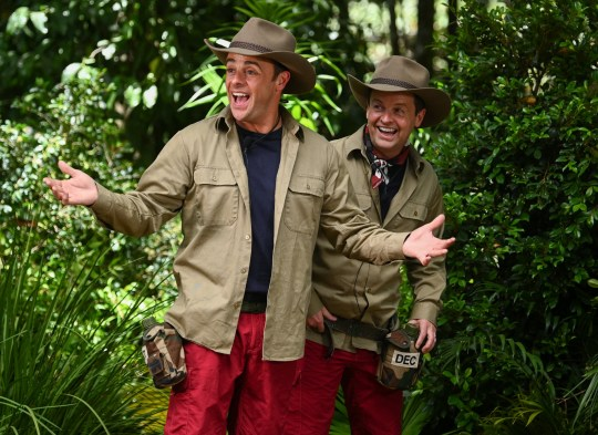 Ant and Dec in I'm A Celeb outfits