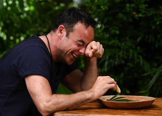 Ant taking part in I'm A Celebrity eating challenge