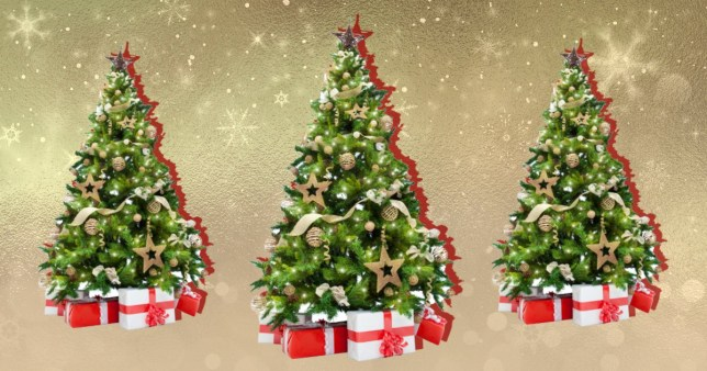 christmas trees on a colourful background